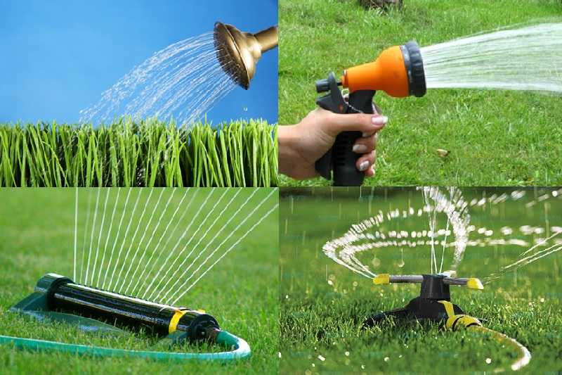 Как сделать газон: виды, подготовка, посадка, уход4