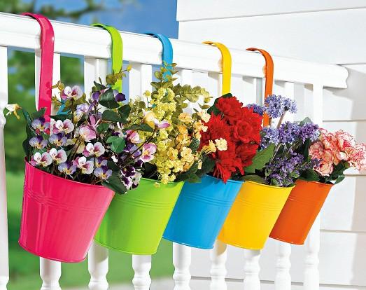Какие растения и когда можно высаживать на балконе?0