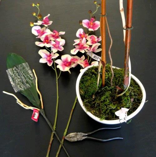 Красивые орхидеи в горшке круглый год2
