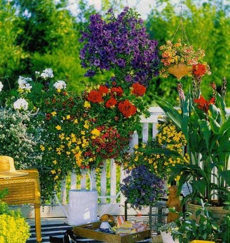 Летний мини-сад — цветущие балконы и террасы2