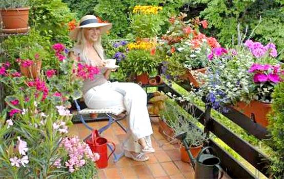 Летний мини-сад — цветущие балконы и террасы3