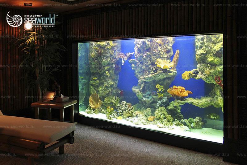 Морской аквариум в квартире1
