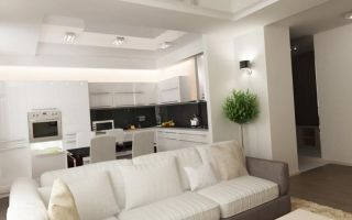 Разновидности дизайна совмещенной с гостиной кухни