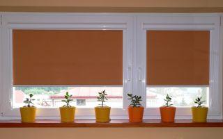 Кассетные рулонные шторы на пластиковые окна: как выбрать?
