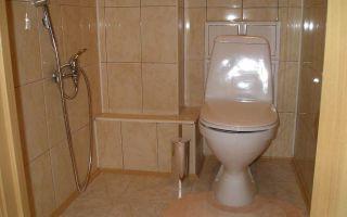 Стоит ли устанавливать душ в туалете?