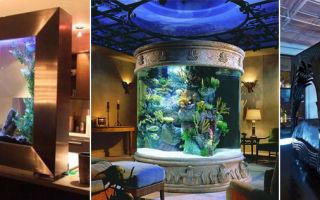 Аквариум в интерьере квартиры: «подводный мир» в миниатюре