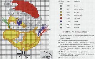Вышивание крестиком для начинающих по готовому рисунку: по клеточкам схемы, матренин посад, нанесение для детей