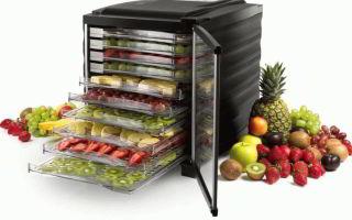 Выбор электросушилки для овощей и фруктов
