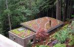 Необычный сад на крыше