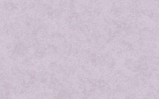 Цветные флизелиновые обои: белые, серые, фиолетовые